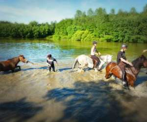 Poney club de saint-christophe