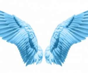 Voyance  ange  bleu