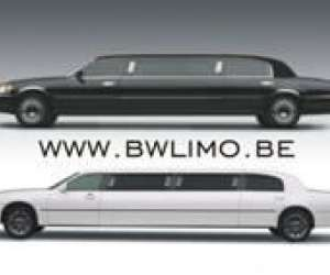 Black and white limousines sprl