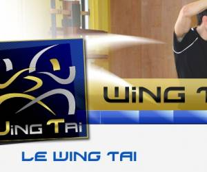 Wing tai belgium