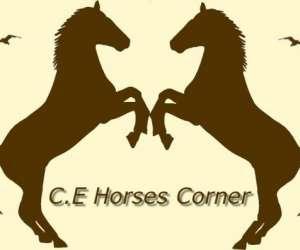 Ecurie horses corner