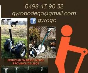 Gyrogo