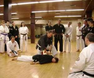 Ki karate kobudo dojo (jutaikai-budo)
