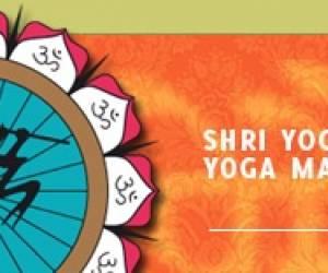 Shri yogeshwaranande yoga mahavidyalaya vzw