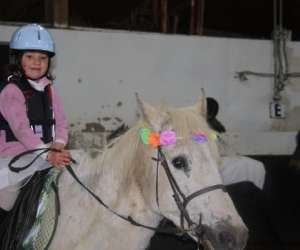 Poney club de gaillemarde sa