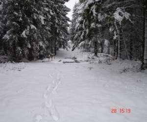 Pistes de ski de fond, raquettes et luges de riezes(chi