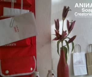 Anina soap creatories