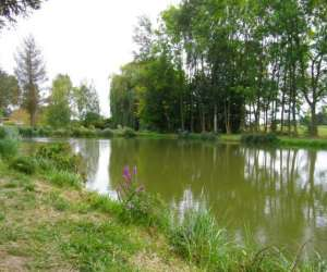 photo Etang Des 3 Saules