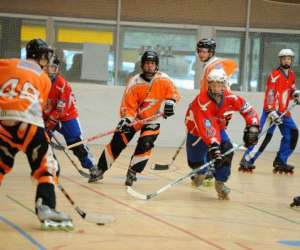 Phoenix roller in line hockey