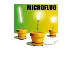 Growshop microfluo