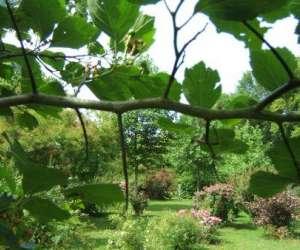 Le bien etre du jardin potager et d ornement