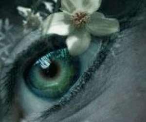 Les yeux gourmands - atelier floral