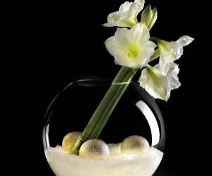 May flower   -  soie ma  fleur