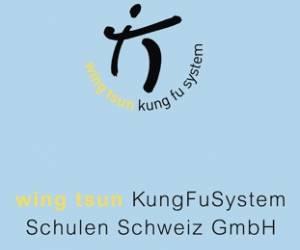 Wing tsun kungfusystem schulen schweiz gmbh
