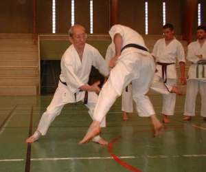 Karate-do shotokai basel