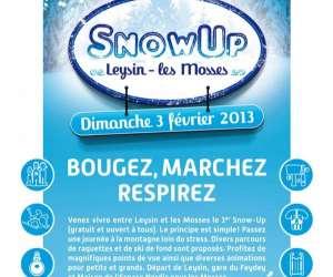 Snowup leysin-les mosses