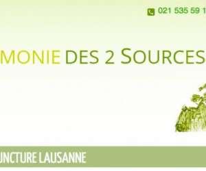 Acupuncture lausanne - harmonie des 2 sources