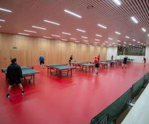Tennis de table à carouge