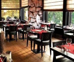 Echo - café, restaurant