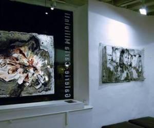 Galerie carla milivinti