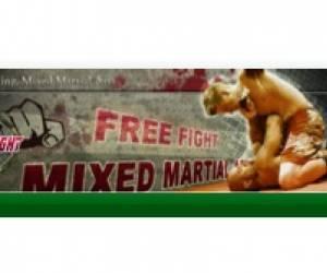 Tours free fight