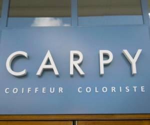 Carpy coiffure