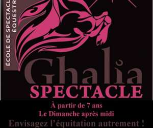 Ecole ghalia spectacle equestre