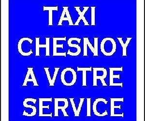 Taxi chesnoy
