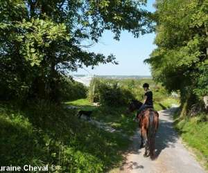 photo Touraine Cheval
