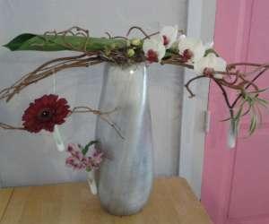 Entre pot et fleur