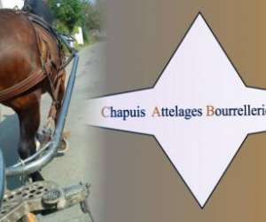 Chapuis attelages bourrellerie cuir