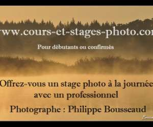 Contact stages photo centre