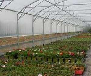 lefebvre horticulture  -  artisan du végétal