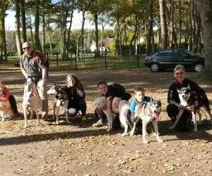 Escapade nordique - cani-randonnée, baptêmes chiens de