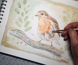 Lydia martin - cours dessin et aquarelle