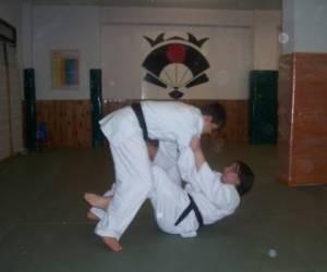 G.f.c.o.a. arts martiaux