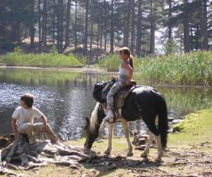 Centre equestre location d ane et poney