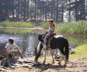 Centre equestre location d ane et poney