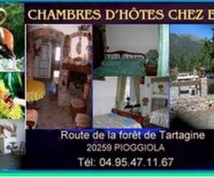 Corsica  miel   -  chambres chez elma