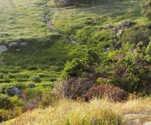 Filitosa, site préhistorique