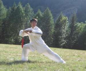 """Association culturelle et sportive euro chinoise  """" acs"""