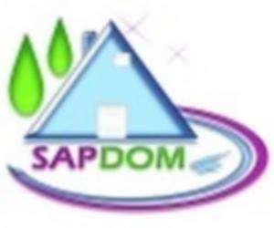 Sapdom