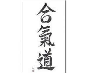 Dojo aikido27