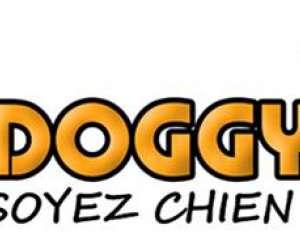 Bedoggy  -  entreprise des services canins