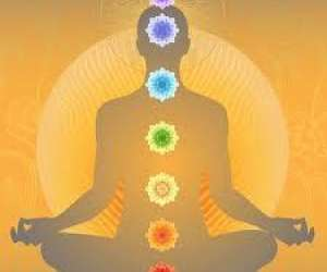 La fine fleur du yoga