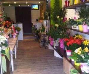 L'art vegetal fleuriste - createur