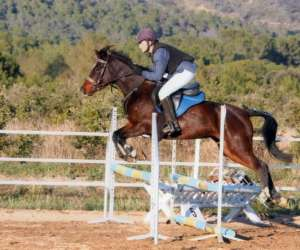 Centre equestre - poney club de lauret - les cavaliers