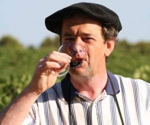 Journee vins-fromages au chÂteau de salies