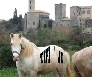 Ferme equestre tipi