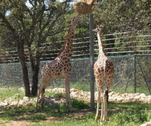Parc zoologique lunaret